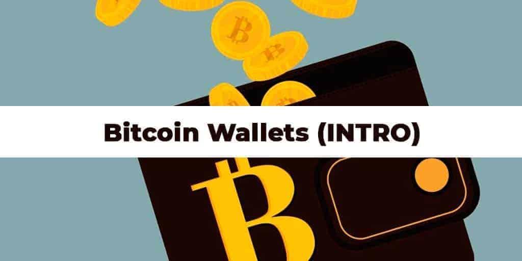Wallets: Qué son y qué tipos hay (Introducción)