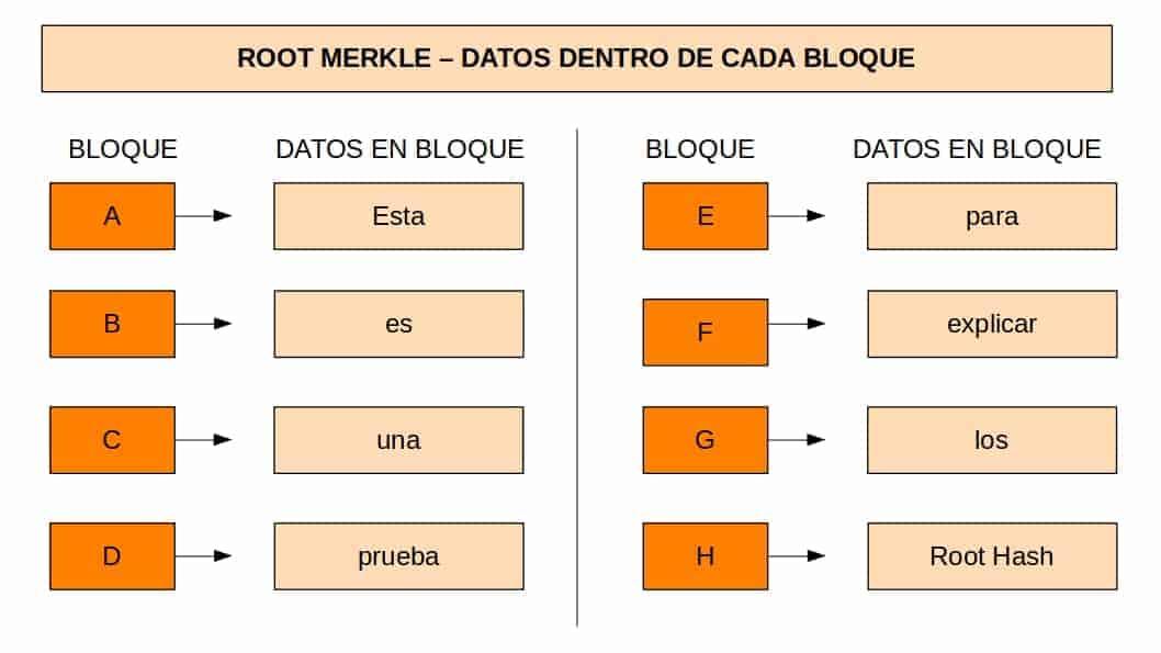 Primer paso para calcular un root hash