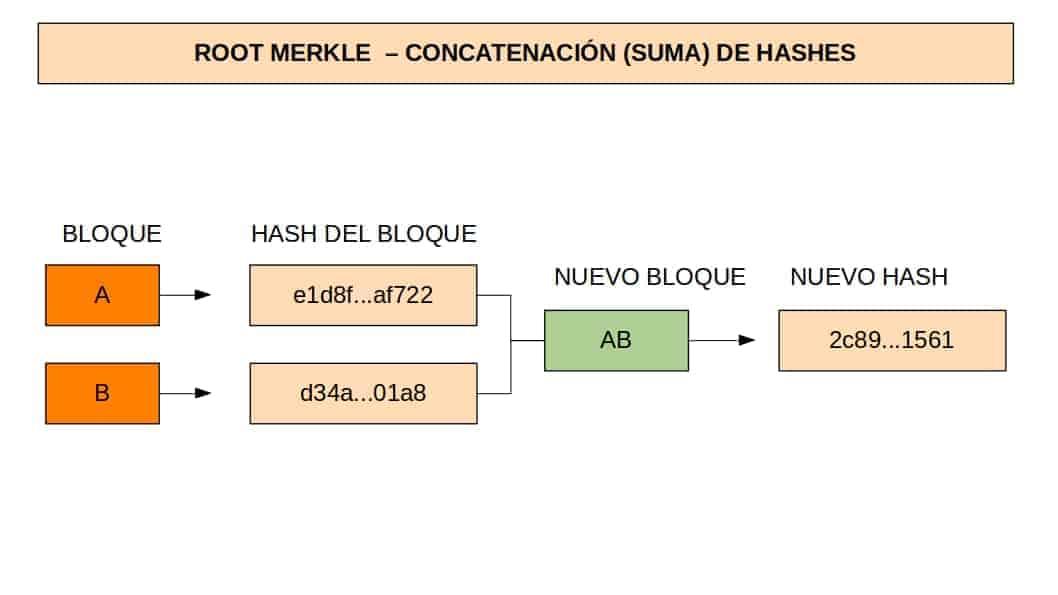 Tercer paso para calcular el root hash