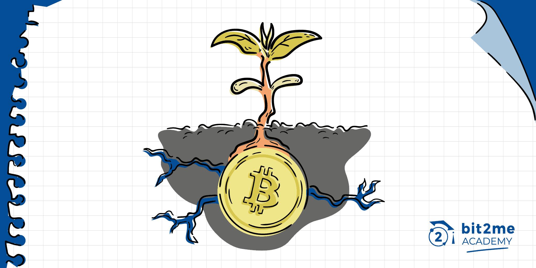cosa sta investendo in bitcoin, come investire in bitcoin