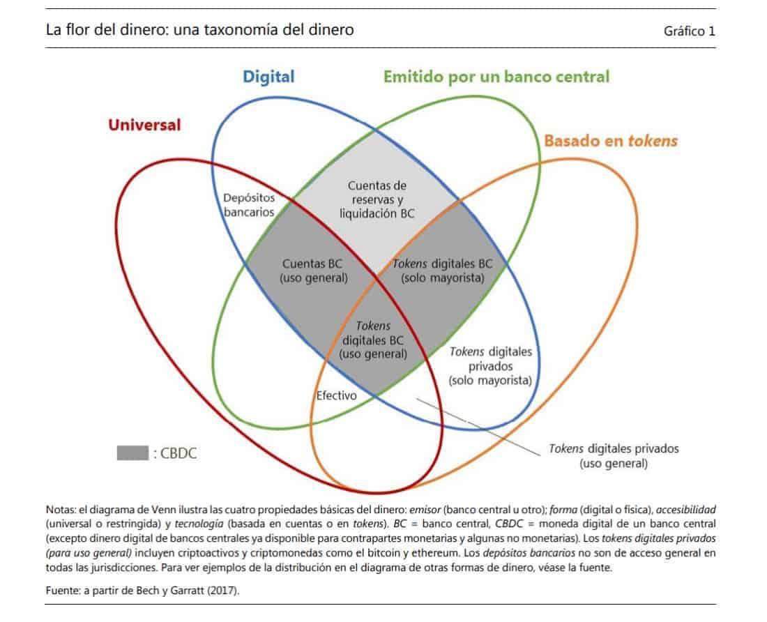 La flor del dinero y su relación con las CBDC